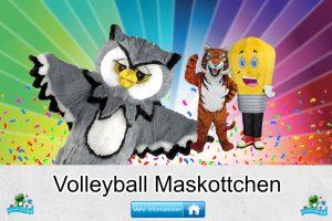 Volleyball Verein Kostüme Maskottchen Karneval Produktion Firma Bau